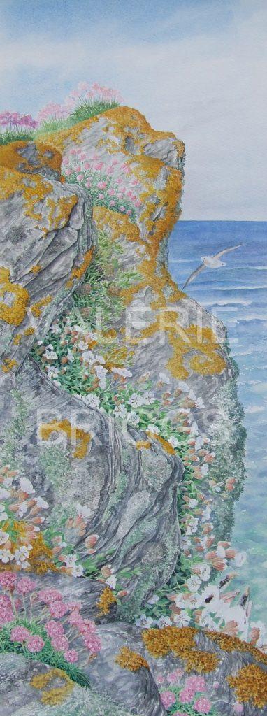 Rockscape by Valerie Briggs